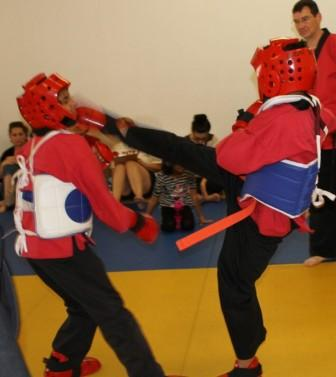Why Enter a Karate Tournament? Should you enter a karate tournament? What could the benefit be? read more at http://www.LVkarate.com