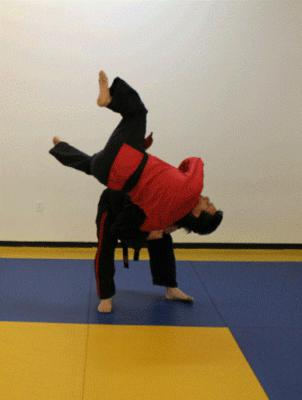 Professional Karate Centers - Karate Throw